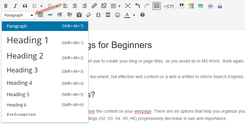 Headings and H1 Tags for WordPress Beginners